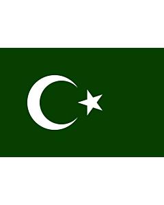 Fahne: Bosnian Muslim