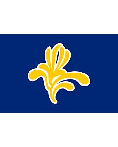 Fahne: Bruxelles