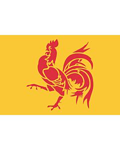 Fahne: Wallonien