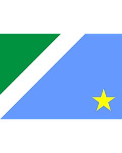 Fahne: Mato Grosso do Sul