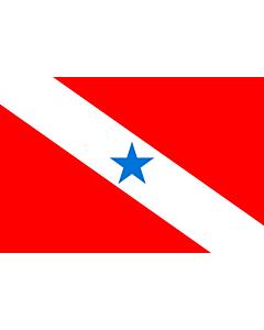 Fahne: Pará