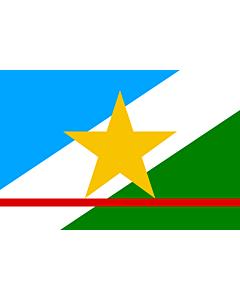 Fahne: Roraima