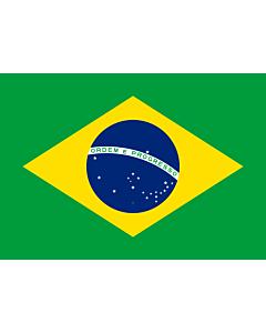 Fahne: Brazil  1889–1960
