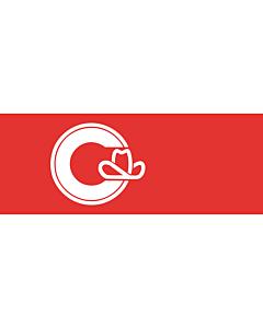 Fahne: Calgary, Alberta