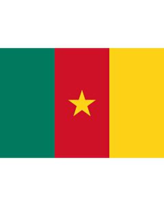 Fahne: Kamerun