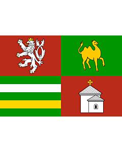 "Fahne: ""RegionPilsen"
