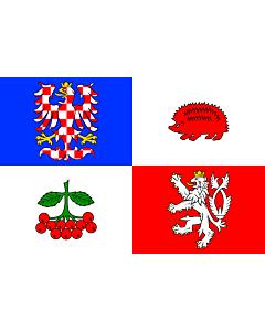 Fahne: RegionVysočina