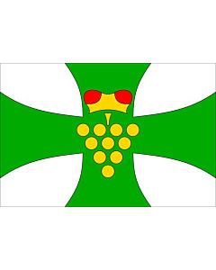 Fahne: Domanin HO CZ | Municipal flag of Domanín village | Domanín, okres Hodonín