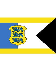 Fahne: Estonia - Commander-in-Chief | Estonian Commander-in-Chief | Kaitsevägede ülemjuhataja lipp | Försvarsmaktens överbefäljavares