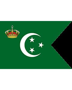 Fahne: Royal Standard of The Crown Prince of Egypt on Land | Royal Standard of The Crown Prince of Egypt 1922-53 | Prince Héritier du Egypt  1922-53 | علم من ولي عهد مصر