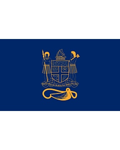 Fahne: Presidential Standard of Fiji | Standard of the President of Fiji bearing the full Coat of Arms of Fiji and a traditional Knot and Whale s tooth in Golden-Yellow