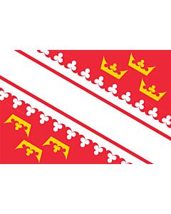 Fahne: Elsass