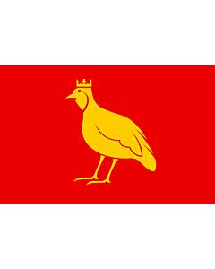 Fahne: Aunis | French province of Aunis | L Aunis | Drapèu d Aunis