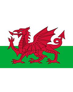 Fahne: Wales