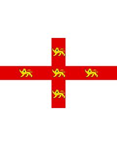 Fahne: York