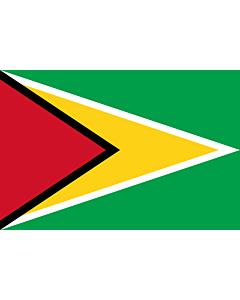 Fahne: Guyana