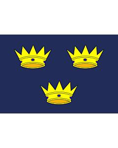 Fahne: Munster