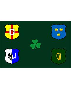 Fahne: Ireland Rugby