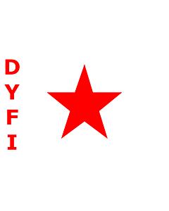 Fahne: DYFI
