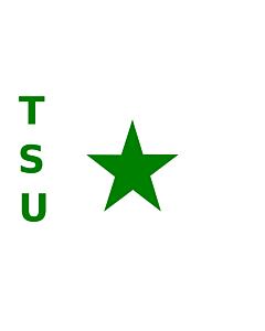 Fahne: TSU