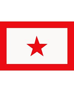 Fahne: UNLF | L UNLF de Manipur