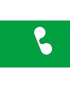 Fahne: Lombardei