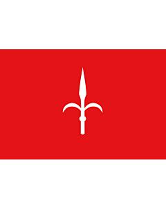 Fahne: Provinz Trieste