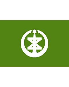 Fahne: Niigata