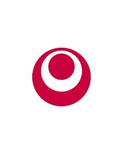 Fahne: Präfektur Okinawa