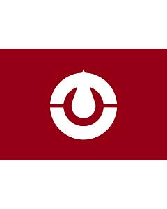 Fahne: Kochi Prefecture | Kochi prefecture, Japan