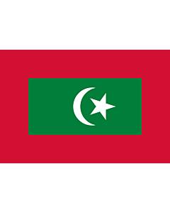 Fahne: President of Maldives | Presidential standard of the Maldives