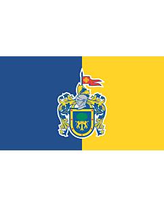 Fahne: Jalisco