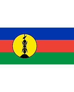 Fahne: Neukaledonien