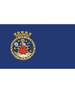 Fahne: Oslo
