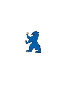 Fahne: Buskerud