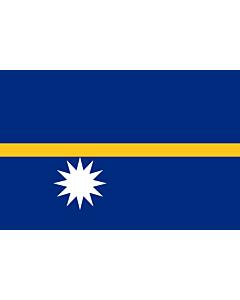 Fahne: Nauru