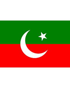 Fahne: Pakistan Tehreek-e-Insaf | Pakistan Tehreek-e-Insaf. Created using Inkscape