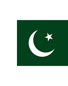 Fahne: Pakistan