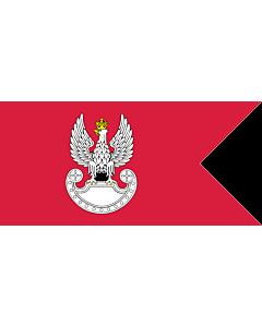 Fahne: Polish Land Forces | Polish Ground Forces flag. Adopted in 1993 | Wojsk Lądowych. Wprowadzona w 1993