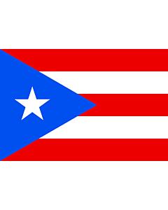 Fahne: Puerto Rico