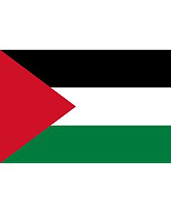 Fahne: Palästina