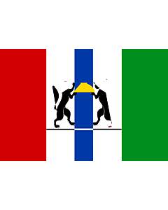 Fahne: OblastNowosibirsk
