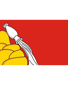 Fahne: OblastWoronesch