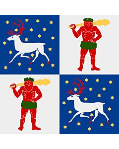 Fahne: Norrbotten