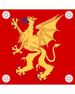 Fahne: Östergötland
