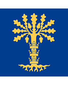 Fahne: Blekinge