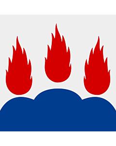 Fahne: Västmanland