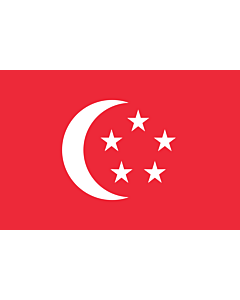 Fahne: President of Singapore | The standard used by the President of Singapore | Presiden Singapura | 新加坡总统旗