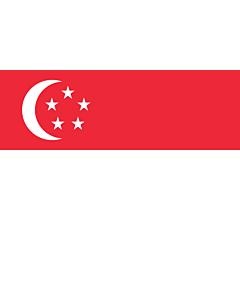 Fahne: Singapur