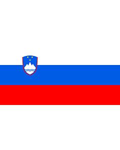 Fahne: Slowenien